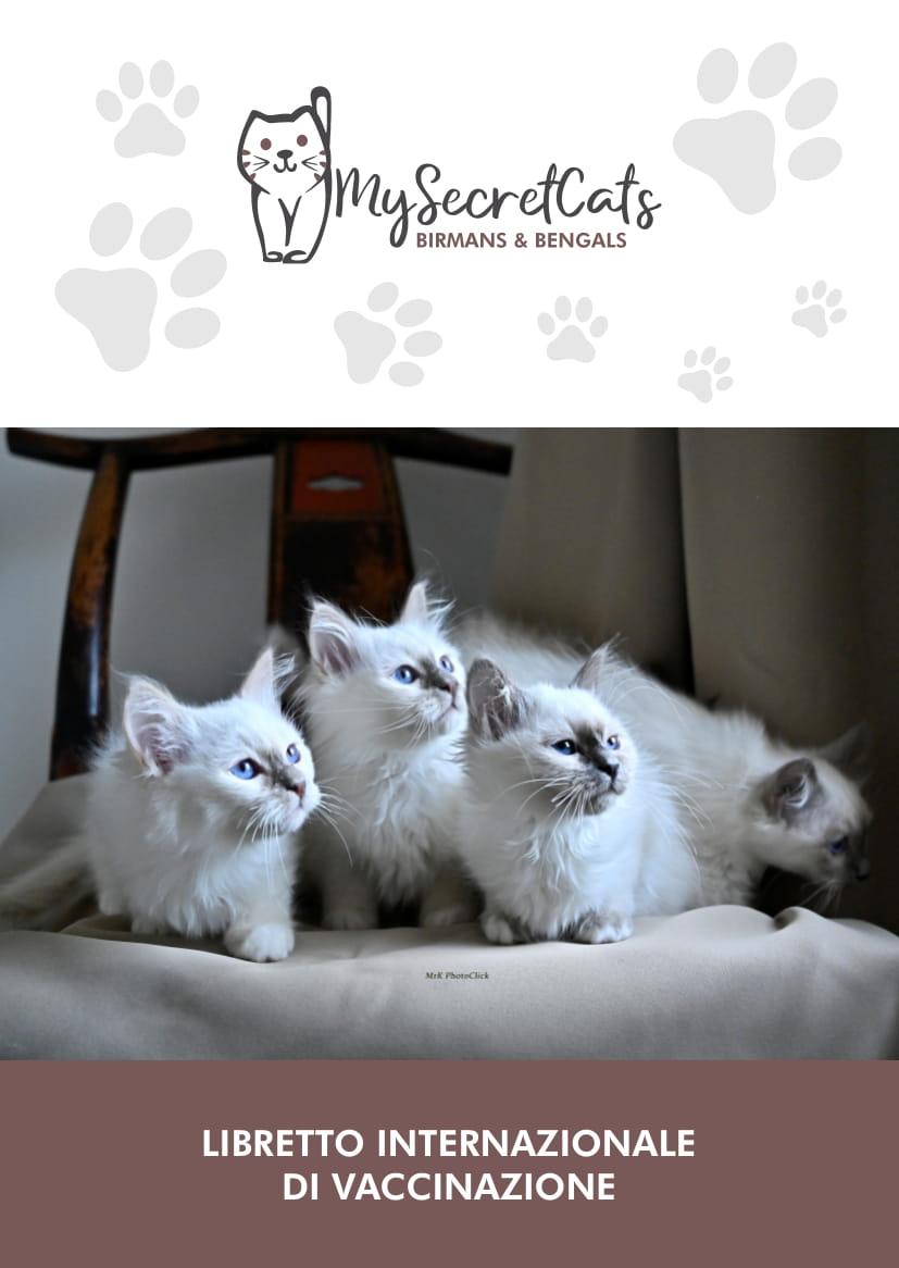 libretto veterinario personalizzato gatto